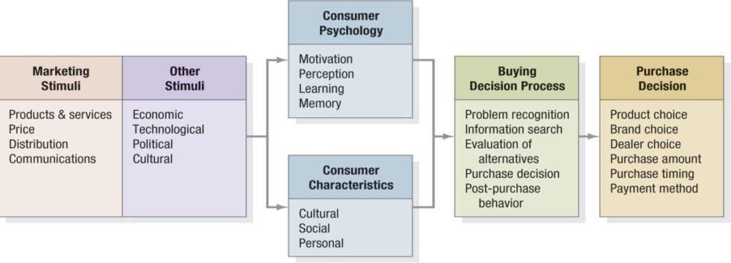Key Psychological Processes